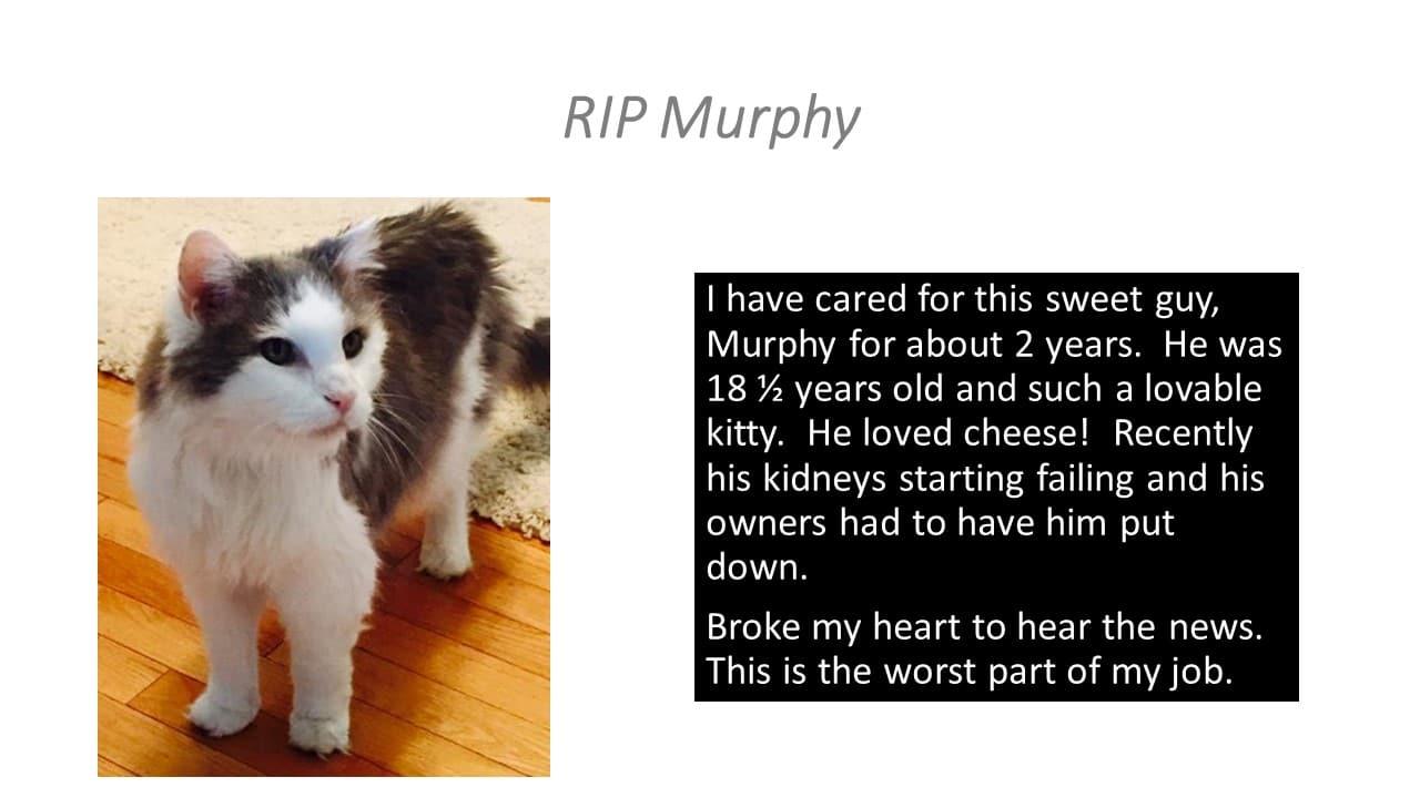 RIP Murphy
